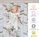 Pickle & Pumpkin Organic Sheets Set for Nursery | 2 Pack Baby Sheets in 100% Organic Jersey Cotton | Baby Boy or Baby Girl | Fox & Chevron