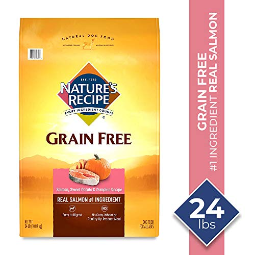Nature's Recipe Grain Free Easy To Digest Dry Dog Food, Salmon, Sweet Potato & Pumpkin Recipe, 24 lb