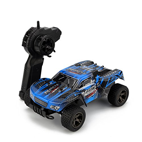 STOTOY 1/18 Scale 4WD RC Car, Electric Racing Buggy(RTR) with High Speed of 20 killometer/h, 2.4GHz Radio Controlled Vehicle for Kids and Adults -Blue