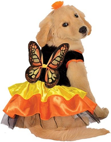 [Rubie's Pet Costume, Large, Monarch Butterfly] (Kids Purim Costumes)