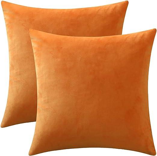 Halloween 2020 Axxo Amazon.com: Rythome Set of 2 Comfortable Throw Pillow Cover for
