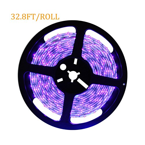 Black Light Fluorescent And Uv Leds