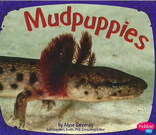 Mudpuppies (Amphibians) pdf