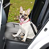 Dog Seat Belt, Harness Car Safety Seatbelt, 2 Packs Adjustable Nylon Strap and Universal Clip For Buckle up Dogs Puppy Cats Pets,Shock Absorbing for Safe Travel (Black) Review