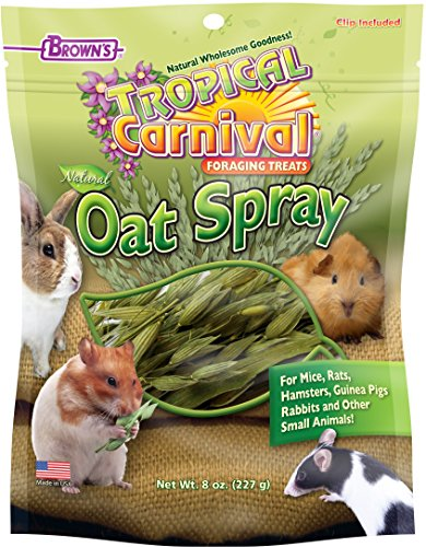 Tropical Carnival F.M.Brown's Natural Oat Spray For Small Animals, 8 (Tropical Carnival Hamster Food)