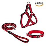 Beker Dog Leash Harness Collar Set,Durable Nylon Braided Leash No Pulling Adjustable Harness Soft Padded Collar for Small Dog/Puppy/Cat Red-Black(Pack of 3)