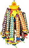 A&E CAGE COMPANY HB875 Happy Beaks Ducky Long Legs, Multicolor