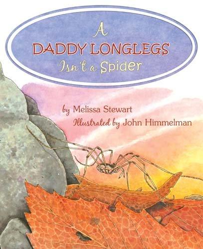 A Daddy Longlegs Isn't a Spider