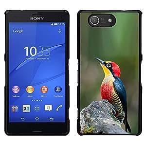 """For Sony Xperia Z3 Plus / Z3+ / Sony E6553 (Not Z3) Case , Verde Naturaleza Primavera Tropical Songbird"""" - Diseño Patrón Teléfono Caso Cubierta Case Bumper Duro Protección Case Cover Funda"""