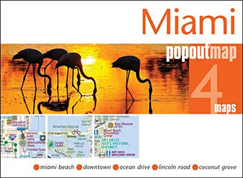 Miami Double Popout Maps