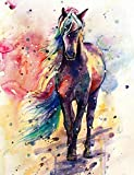 5D Full Drill Diamond Painting Kit, DIY Diamond Rhinestone Painting Kits for Adults and Children Embroidery Arts Craft Home Decor 19.6 x 16 inch (Colorful Horse)