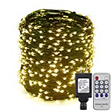 ER CHEN(TM) 165ft Led String Lights,500 Led Starry Lights on 50M Green Copper Wire String Lights Power Adapter + Remote Control(Warm White)