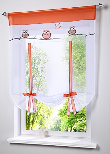 AiFish 1 Piece Cartoon Owl Kitchen Roman Shades for Windows Rod Pocket Top Sheer Curtains Embroidered Home Decor Short Ribbon Tie Up Tulle Gauzy Organza Balloon Curtain Shades W31X L47 inch (Organza Curtain Rod Pocket Ribbon)