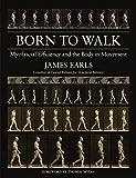 capa de Born to Walk: Myofascial Efficiency and the Body in Movement