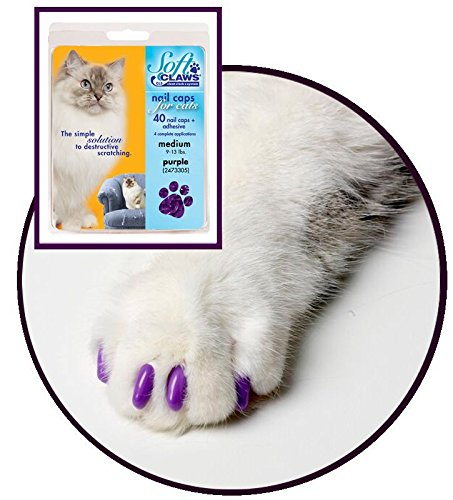 Image of Soft Claws for Cats, Size Large, Color Purple