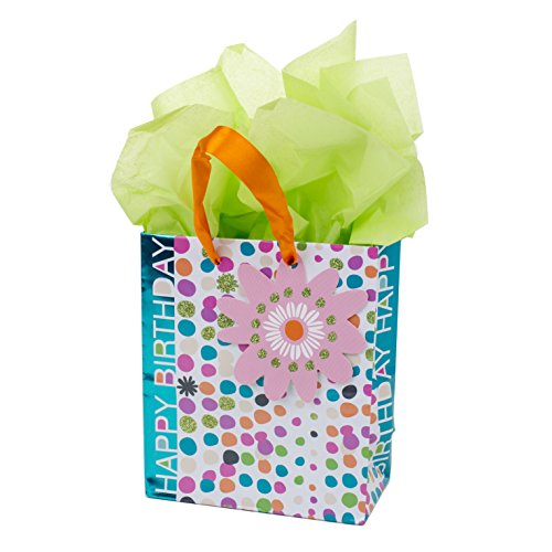 Hallmark Small Birthday Gift Bag with Tissue Paper (Dots with Flowers) -