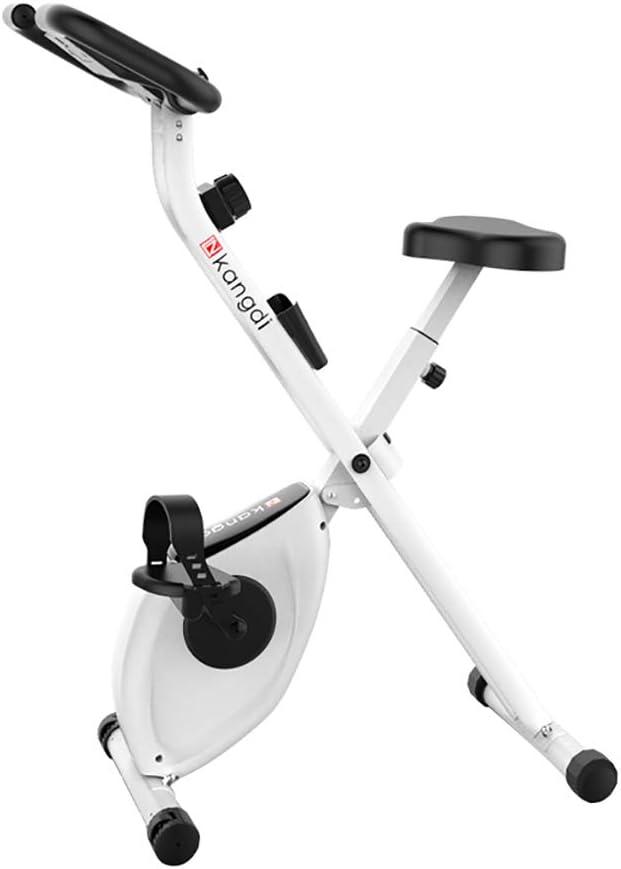 Snow Yang Bicicleta De Ejercicio MagnéTica para Interiores, Segura ...