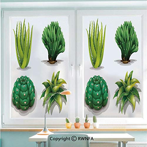 RWNFA Removable Static Decorative Privacy Window Films Aloe Vera Plants Cacti Rejuvenating Healing Herbal Spiny Collection for Glass (22.8In. by 35.4In),Green Apple Green Brown