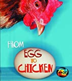 From Egg to Chicken (Space Explorer)