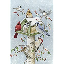Toland Home Garden Winter Birds 12.5 x 18 Inch Decorative Snow Bird Cardinal Jay Birdhouse Garden Flag