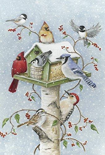 Toland Winter Birds 12.5 x 18 Snow Birdhouse Berries Cardina