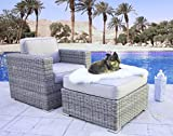 Living Source International Arm Chair and Ottoman with Cushion Furniture Patio Sofa Couch Garden, Backyard, Porch or Pool All-Weather Wicker (Club and Ottoman, Verona Grey)