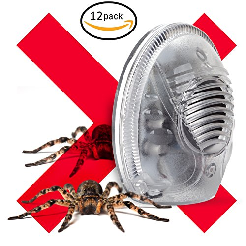 Ultrasonic Spider and Rodent Electronic Plugin Pest Repeller (12 Pack) by Sonic Pest Fighter
