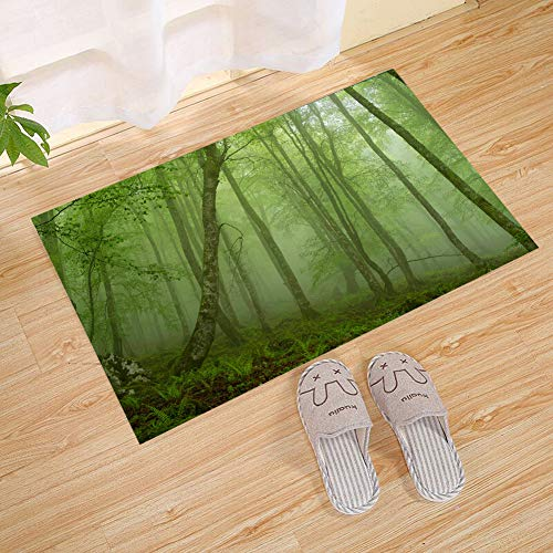 JANNINSE Four Seasons Theme Summer Green Fog Forest Twisted Trees Wild Grass Eco Large Door Mats, Large Interior Doors Outdoor Door Mats, Shoe Scrapers Front Door Mats -