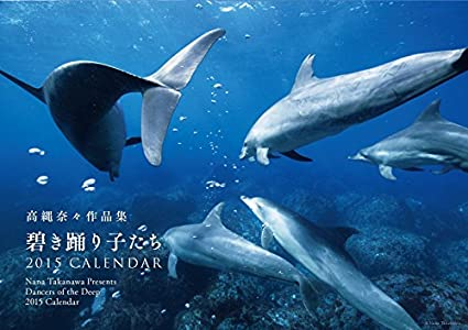 amazon 高縄奈々作品集 碧き踊り子たち 2015カレンダー 文房具