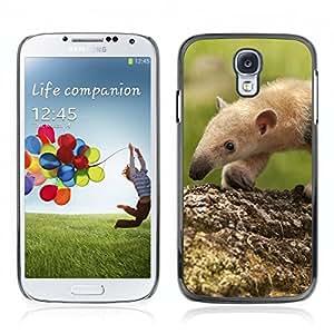 Carcasa Funda Case //Anteater V0000286// Samsung Galaxy S4 i9500