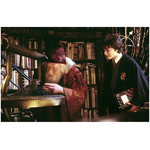 Harry Potter and the Chamber of Secrets Daniel Radcliffe and Professor Dumbledore 8 x 10 inch photo