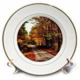 3dRose USA, Maine, Bethel. Wood trail with fall foliage. - Porcelain Plate, 8-inch (cp_208750_1)