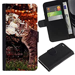 American Curl Shorthair Cat Manx - la tarjeta de Crédito Slots PU Funda de cuero Monedero caso cubierta de piel Apple iPhone 4 / iPhone 4S / 4S