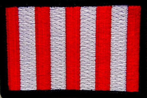Son's of Liberty Flag Patch 3