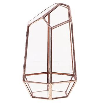 MagiDeal Glas Metall Geometrisch Terrarium Box Unregelmäßiger Sukkulenten