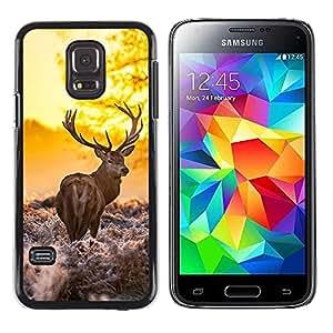 Caucho caso de Shell duro de la cubierta de accesorios de protección BY RAYDREAMMM - Samsung Galaxy S5 Mini, SM-G800, NOT S5 REGULAR! - Majestic Morning Stag