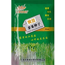 Soybean Sprouts Seed * 1 Packet (50 ml) Seeds * Glycine max * Non-GMO Heirloom * Vegetable Seed Samen * *