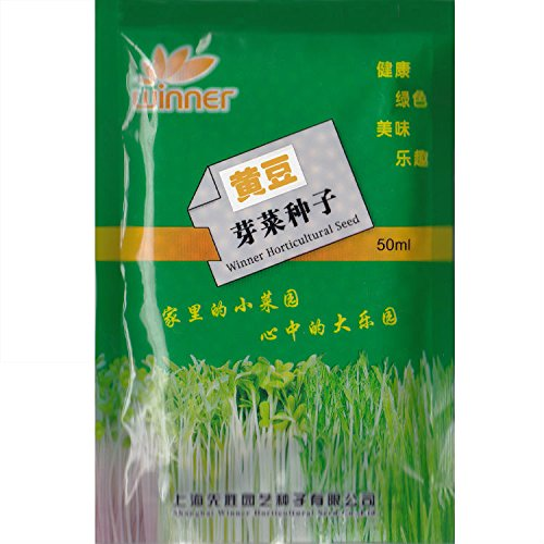 - Soybean Sprouts Seed 1 Packet (50 ml) Seeds Glycine max Non-GMO Heirloom Vegetable Seed Samen