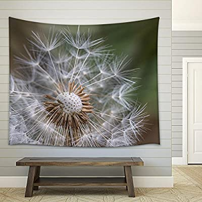 Made With Top Quality, Gorgeous Technique, Dandelion in Nature with Blurry Background Fabric Wall