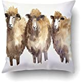 Throw Pillow Cases Decorative Watercolor Sheep Hand Drawn Creative Farm Animals Background Cushion Covers Pillowcases Onside Printed Square 18x18 Inch