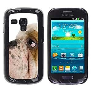 Be Good Phone Accessory // Dura Cáscara cubierta Protectora Caso Carcasa Funda de Protección para Samsung Galaxy S3 MINI NOT REGULAR! I8190 I8190N // English Bulldog British Breed Do