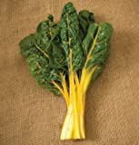 All yellow for baby leaf or full size bunches. Bright yellow stems and leaf veins contrast with deep green leaves. Decorticated (rubbed for easier germination), sized seeds. David's Garden Seeds is a Veteran owned business that has been offer...