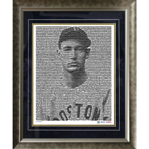 (MLB Boston Red Sox Ted Williams Mosaic Framed 16x20 Photo)