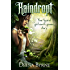 Raindropt: Your typical girl meets gnome story