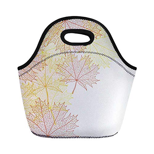 Leaves Durable Lunch Bag,Pattern with Maple Tree Fall Leaves Skeleton Dried Golden Forms Halloween Decoration Decorative for School Office,11.0