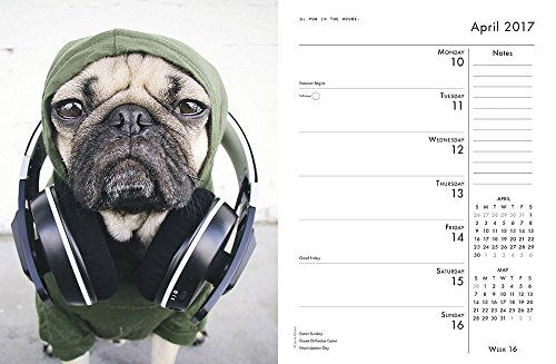 Doug-the-Pug-2017-Engagement-Calendar