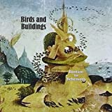 Bantam to Behemoth by Birds and Buildings (2012-07-26)