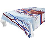 Double Joy Modern Rectangle Square Tablecloth 54x72 Inches Medical Biology Cover for Dinners Parties Banquet or Picnic