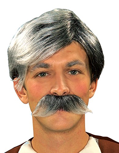 Forum Novelties Gepetto Wig and Moustache Kit, Grey -