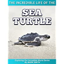 The Incredible Life of the Sea Turtle: Fun Animal Ebooks for Adults &  Kids 7 and Up With Incredible Photos (Exploring Our Incredible World Series)